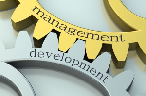Management and Development concept on the gearwheels